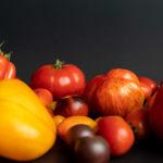 Bunte Tomatenvielfalt