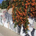 Bunte Grafitis