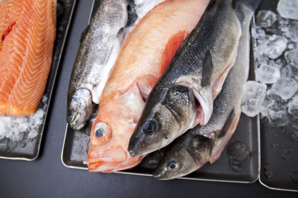 Fisch | Foto (c) Julian Kutos